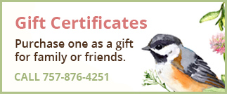 button-gift-certificates